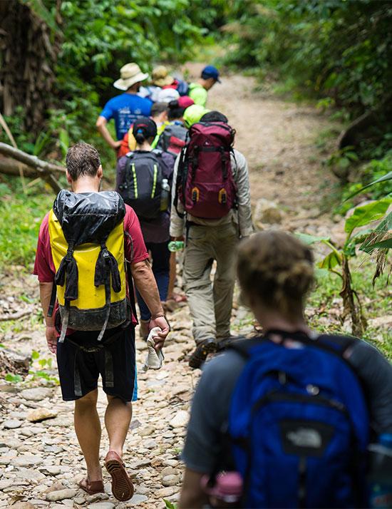 software punto venta restaurante hotel retail comercios Mexico tour caminata selva